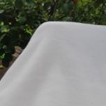 Fliis. Naturaalne valge